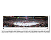 PANORAMA in PHOENIX COYOTES Found in: NHL > PHOENIX COYOTES > Souvenirs > Collectble
