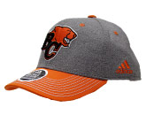 GREY STRUC ADJ HAT in BC LIONS Found in: CFL > BC LIONS > Clothing > Hats