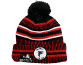 pic# 217284, style# 12050455 for River City Sports product in: NFL > Atlanta Falcons > Clothing > Hats