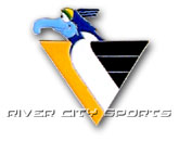 pic# 40045, style# NHLPMPPIT for River City Sports product in: NHL > PITTSBURGH PENGUINS > Souvenirs > Pins